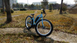脂肪質のタイヤが付いている快適なリチウム電気バイク