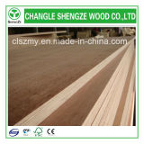 1220X2440/1250X2500mm Low Price para Furniture Grade Commercial Plywood