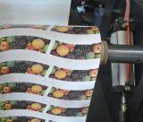 Prix de machine d'impression de Flexo de couleur de la tasse de papier 2 de qualité