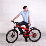 1: 1 Bike системы e толковейшей педали ассистентский