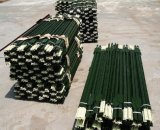 Poste en acier clouté peint vert américain de T Post/6.5FT 1.33lb T