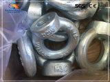 Горячая продавая выкованная покрынная цинком гайка глаза DIN 582