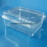 플라스틱 식품 포장 상자 고추를 위한 처분할 수 있는 명확한 플레스틱 포장 상자