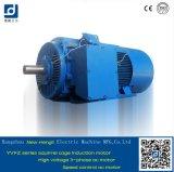 3 Geschwindigkeit variabler Wechselstrommotor der Phasen-475kw 400V 25Hz Yvfz