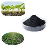 extrait organique d'usine avec de l'acide alginique 16% d'extrait d'algue