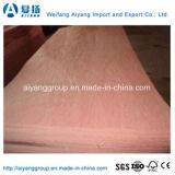 Poplar/madeira compensada comercial núcleo Okume/Bintangor/Sapeli do eucalipto para a mobília/decoração