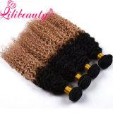 Unprocessed естественные бразильские человеческие волосы Remy Ombre девственницы