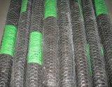 1/2inch, 3/4inch, 1inch galvanisierte sechseckigen Maschendraht/Huhn-Draht-Filetarbeit
