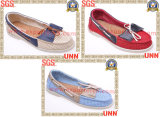 Chaussures 2013 de Madame toile (SD8221)