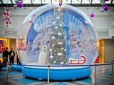 Globo gonfiabile gigante della neve per le visualizzazioni della finestra