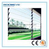 Finestra di vetro della finestra di alluminio di Roomeye, finestra della feritoia