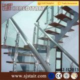 De binnenlandse Gouden Balustrade van het Glas van het Roestvrij staal in de Delen van de Trede (sj-904)