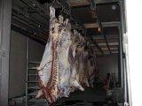牛およびヤギの屠殺場