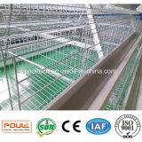 Cages Breeding galvanisées de couche de batterie de machines de ferme de poulet