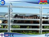 Сверхмощная горячая окунутая гальванизированная панель скотин скотного двора (FLM-CP-006)