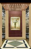 Ascenseur sûr et stable de Fujizy de Vvvf de passager