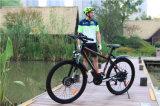 Bicicleta elétrica de 48V 500W, bicicleta de montanha elétrica