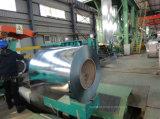 Aço galvanizado prima Coil/Gi do preço do competidor