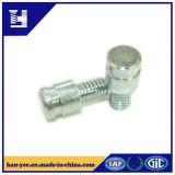 Boulon/vis professionnels de dispositifs de fixation en métal de fournisseur