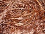 Fonte: Sucata de cobre Millberry 99.9%. Sucata de cobre da sucata 99.99% do fio de cobre para a venda