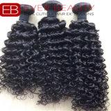 Tessuto indiano brasiliano dei capelli umani del Virgin di Remy delle trecce del gruppo