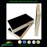 15m m calidad caliente Fillm de la prensa de dos veces hicieron frente a la madera contrachapada con la película negra