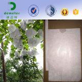 Protezione di carta impermeabile all'ingrosso del sacchetto dell'uva della frutta del Perù crescente