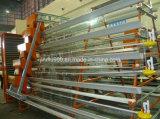 Het Frame van de Kooi van de Kip van de Apparatuur van het gevogelte voor het Gebruik van het Landbouwbedrijf