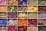 De Chinese KruidenTrekker voor de Bloem van de Wortel nam het Zoethout Stevia van het Verlof van de Thee toe