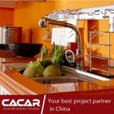 Gabinete de cozinha plástico importado da tomada de Verona estilo clássico (CA09-17)