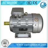 Госпожа вентиляторный двигатель для металлургии с ротором Алюмини-Штанги