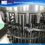 Terminar la línea de relleno de llavero de la planta de embotellamiento del agua potable