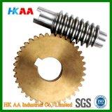 La rueda de engranaje de la alta precisión, rueda de engranaje del metal, juega la rueda de engranaje