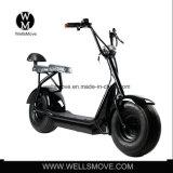 Bicicleta gorda 1000W de la bici del interruptor del neumático