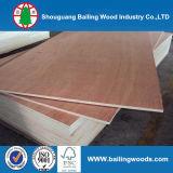 12 milímetros de la madera contrachapada de melamina comercial de la hoja hicieron frente a la madera contrachapada