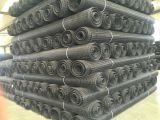 Poliester Geogrid biaxial hecho en China