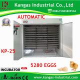 Le CE a reconnu l'incubateur automatique d'oeufs de 5280 oeufs