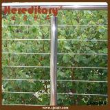 屋内および屋外のためのミラーの終わりのステンレス鋼ケーブルの柵(SJ-H1032)