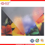 Hoja de la PC para la caja ligera del anuncio - certificada por ISO9001: 2000