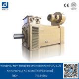 Motor elétrico variável da C.A. da freqüência 380V 60Hz 55kw