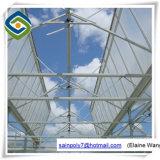 Grüner Farbton-Netz-Deckel-materielles Glasgewächshaus für Pilz