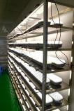 100lm/W 4000K 60Wライト50000時間のIP65の三証拠LED