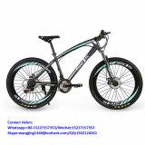 Cheap Carbon Fat Tire Bike Mountain Bike (ly-a-6)