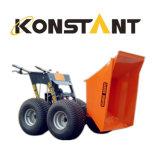 Descargador de motor con gasolina Kt-MD250c de la máquina de la construcción mini
