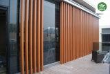 WPC ignifugan el panel de pared/el revestimiento