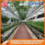 중국 농업 정원 강화 유리 온실