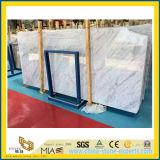 Plak van Carrara van Bianco de Witte Marmeren voor Bevloering