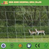 Rete fissa della giuntura di cerniera/rete fissa del bestiame/rete fissa delle pecore/rete fissa dei cervi/fabbrica animale della rete fissa