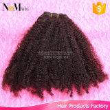 広州の製造者は市場の提供のブラジルの巻き毛のCoilyのバージンの人間の毛髪を最もよく卸し売りする