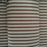 Tessuto tinto filato 100% del popeline di cotone per le camice/vestito Rls40-8po